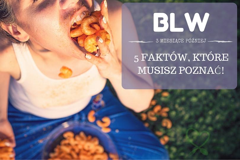 opinie o BLW, porady