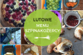 Lutowe menu Szpinakożercy – jem za dwóch!