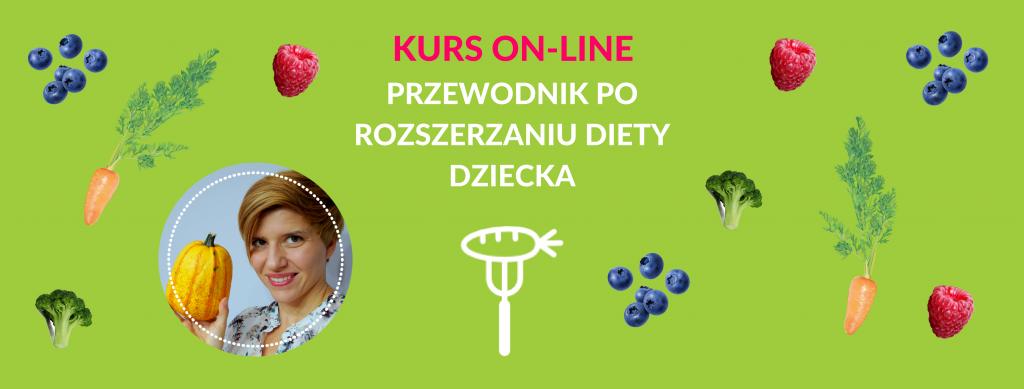 KURS ON-LINE (1)