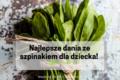 Najlepsze dania ze szpinakiem dla dziecka! Międzynarodowy Dzień Szpinaku