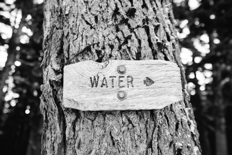 nawyk picia wody u dzieci