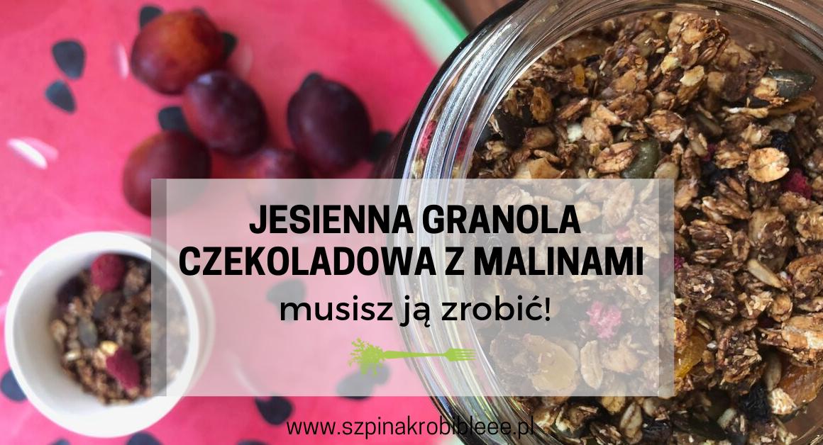 granola-czekoladowa-z-malinami